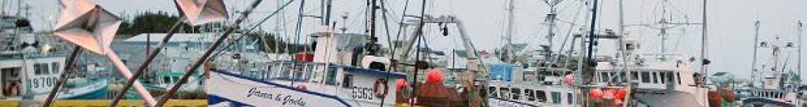 T&J Seafoods Ltd.